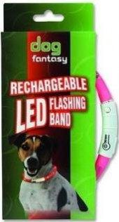 Obojek pro psy svítící Dog Fantasy