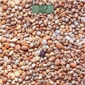 Osobní váha Sencor SBS 2302SN