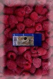 Ovoce mražené Twardzik