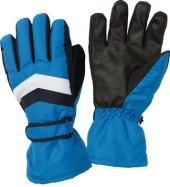 Pánské lyžařské rukavice Crivit Pro