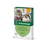 Pipety pro kočky a králíky antiparazitní Advantage