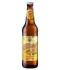 Pivo světlé výčepní Třeboňské Bohemia Regent