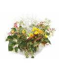 Podzimní košík květin