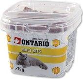 Pamlsky pro kočky polštářky Ontario