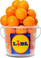 Pomeranče Lidl - kbelík