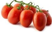 Rajčata Datterino
