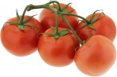 Rajčata keříková