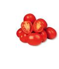 Rajčata lahvová