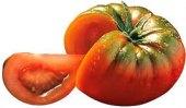 Rajčata Marmande Raf