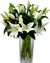 Řezané lilie