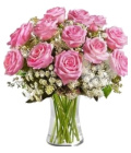 Řezané růže Albert