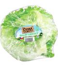 Salát ledový Česká chuť