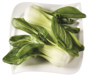 Salát Pak Choi