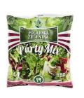 Salát Párty mix
