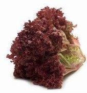 Salát Rosso