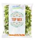 Salát top mix Polabská zelenina