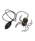 Skákací pavouk