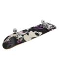 Skateboard Sulov