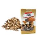 Směs sušených hub České houby