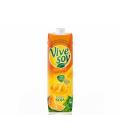 Sójový nápoj ochucený Vivesoy