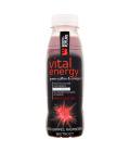 Šťáva Vital Energy Body&Future
