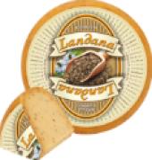 Sýr Gouda s vlašskými ořechy Landana