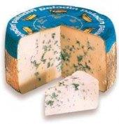 Sýr Paladin