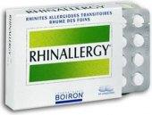 Tablety proti alergii Rhinallergy