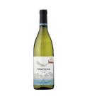 Víno Chardonnay Trapiche