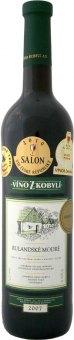 Víno Rulandské modré Víno z Kobylí - výběr z hroznů