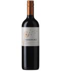 Víno Sauvignon Blanc Terranoble