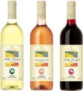 Vína Víno Mikulov - svatomartinské