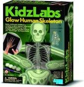 Vzdělávací hra Lidská kostra Kidz Labs