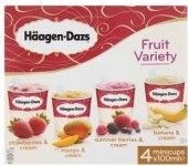 Zmrzlina v kelímku Fruit variety Häagen-Dasz