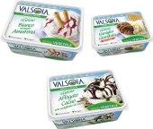 Zmrzlina sójová Valsoia