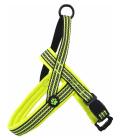 Postroj active dog neoprene m/l limetka 2,5x64-80cm