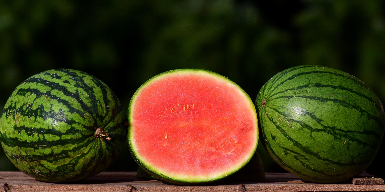 meloun-rez.jpg